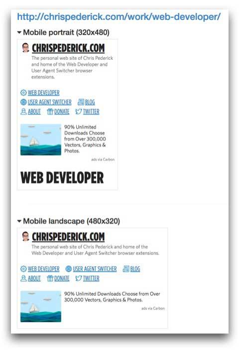 Example Web Developer Responsive Layout